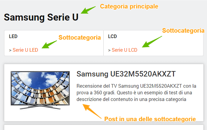 Gestione Categorie e Sottocategorie WordPress